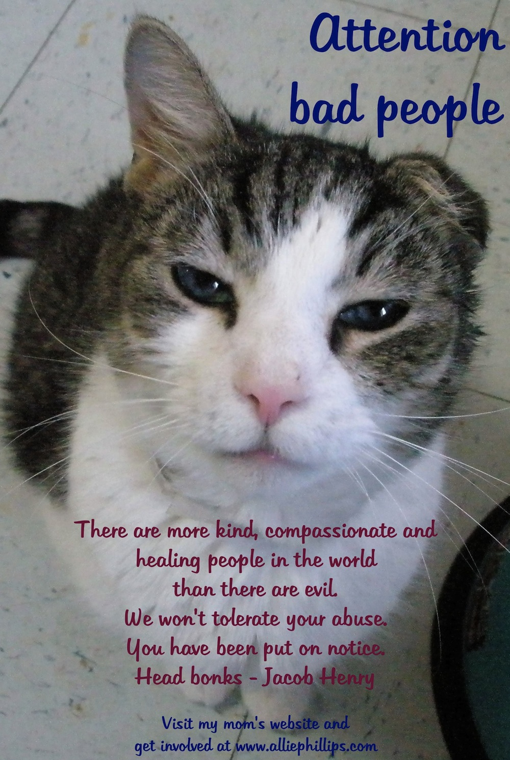 Animal Abuse Quotes Animal Abuse Quotes Cats
