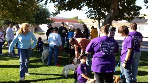 High Desert Domestic Violence Program (Victorville, CA)